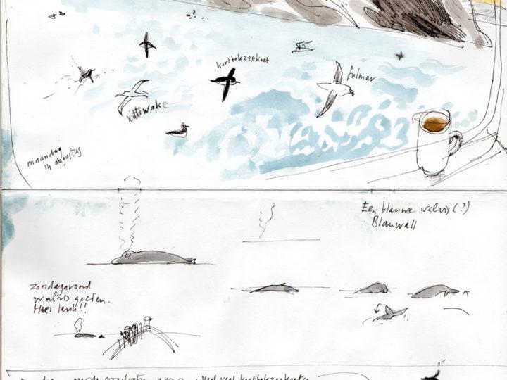 Spitsbergen. Vanuit het raam